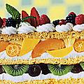 (1)1fruitcake