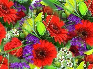 1-flower-bouquet-red-blue