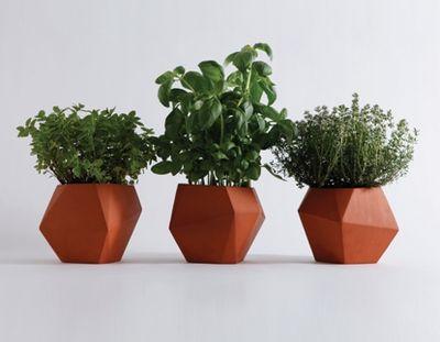 Nich Fraser herb pots