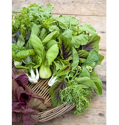 Oriental_vegetables