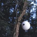 A_white_bird_ball