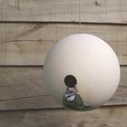 A_white_bird_ball_2
